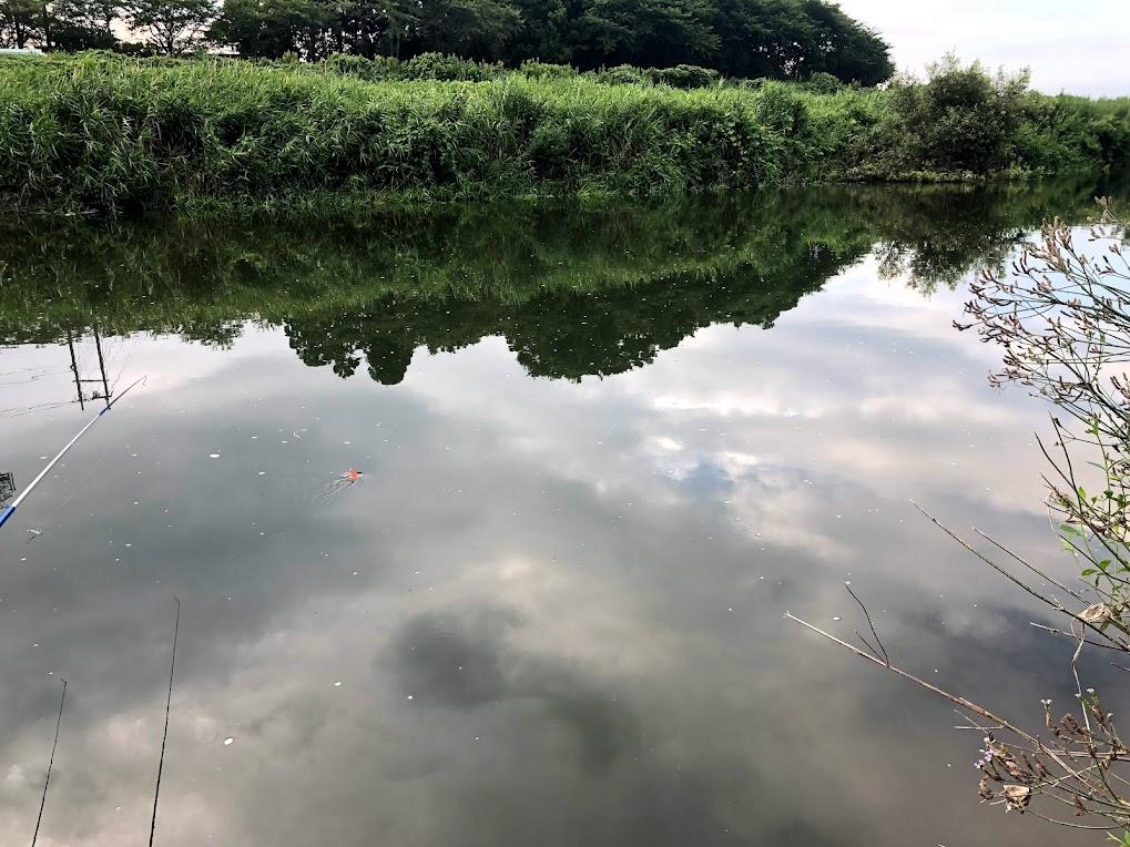 宇曽川コアユ釣り